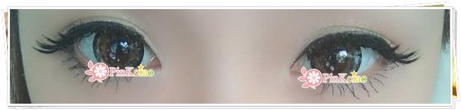 刘贝妮分享 - Geo lotus 莲花棕 不可错过的花系列
